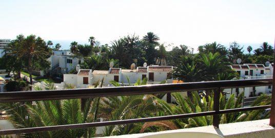 [AL-M02] Apartment 1 bedroom in Las Americas – RENTED