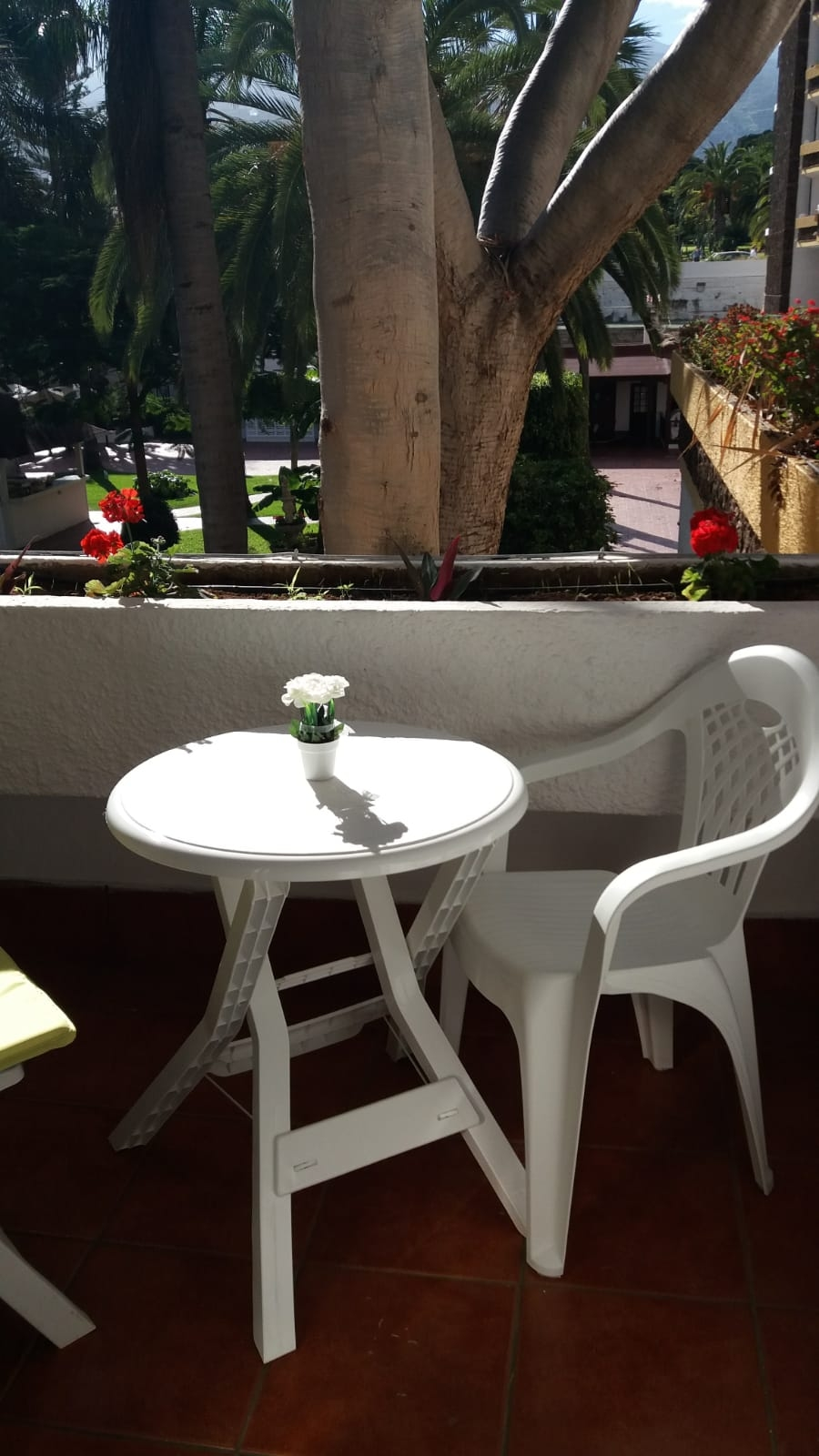 [AP-160] Apartment with two studio apartments in Puerto de la Cruz